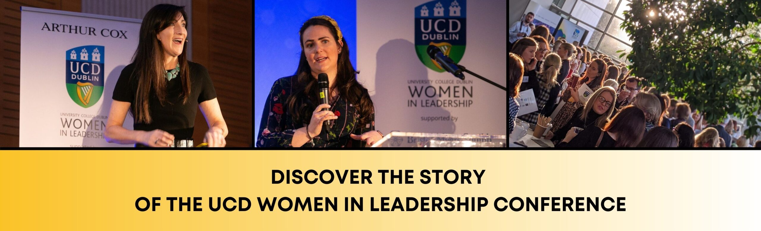 find the story of ucd women in leadership